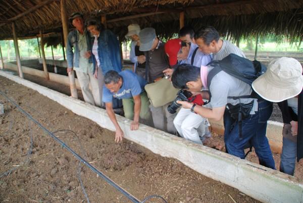 北海道農民連キューバ視察 2010年11月10日〜20日�