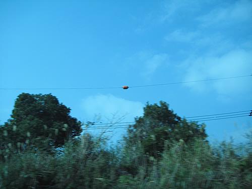 第20回沖縄平和を考えるツアー 2008年1月6日〜9日 その9