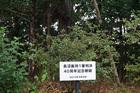 長沼平和ツアー2019�