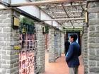 台湾歴史と文化の旅 2011年1月19日〜23日�